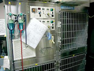 高濃度酸素集中治療室 ICU